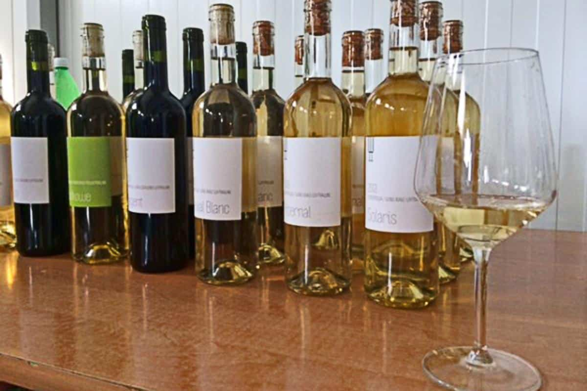 Wines from Chodorowa winery in Poland
