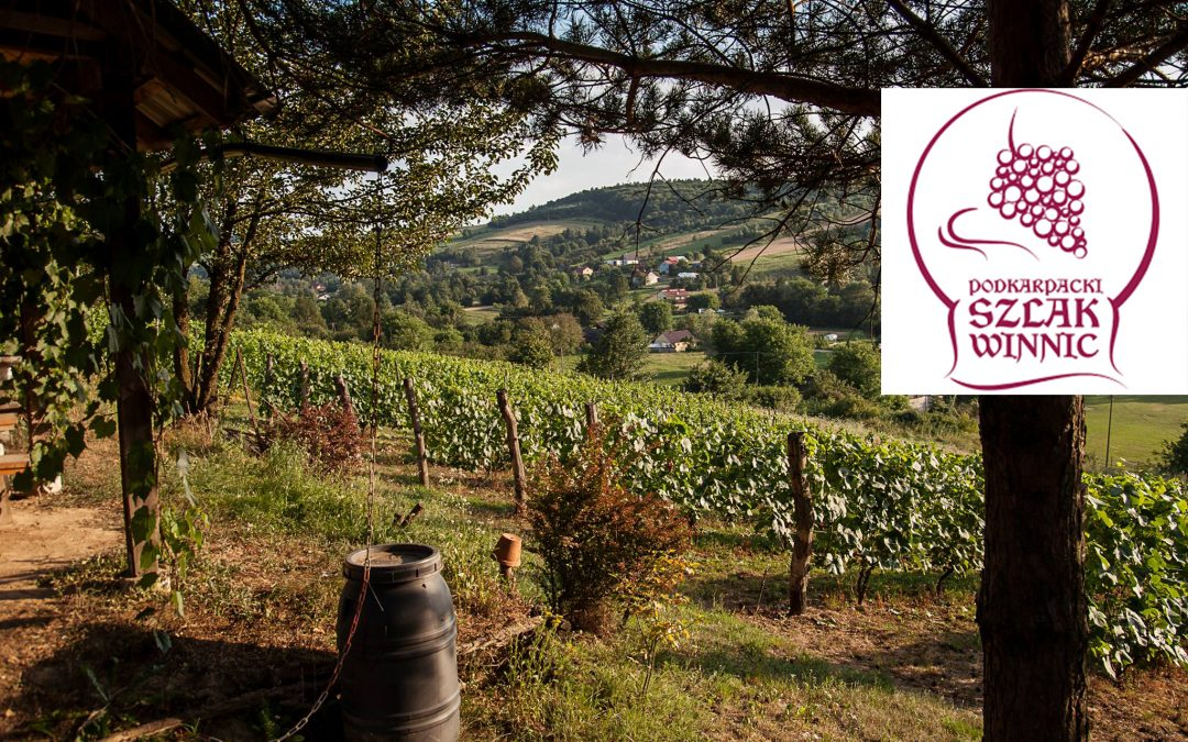Where to Go Wine Tasting in Subcarpathian Region of Poland